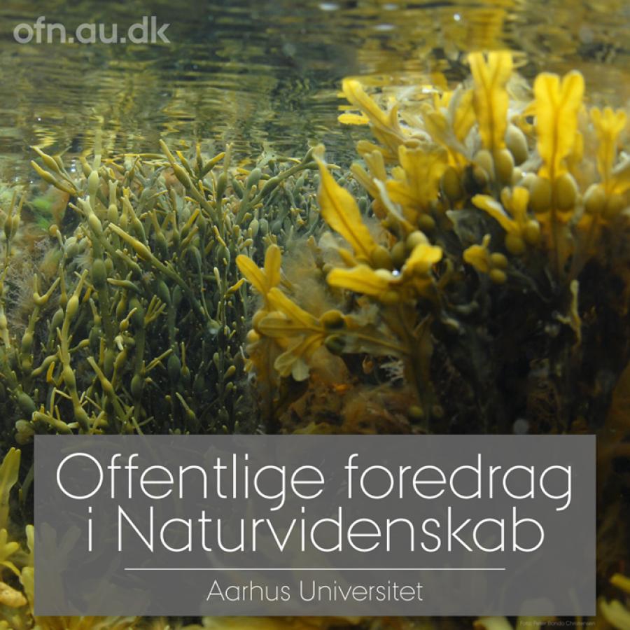 Offentlige foredrag i naturvidenskab fra Århus Universitet